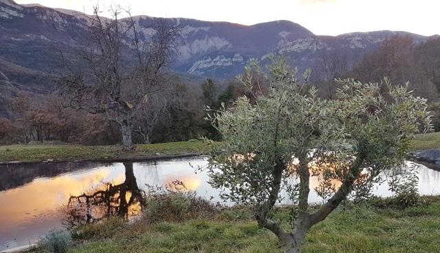 bassin-hiver-soleil-soir