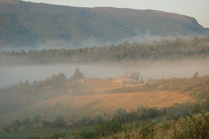la brume donne une atmosphère de tableau de peintre